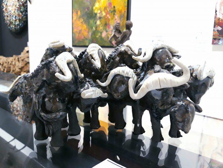 Kudde Buffels