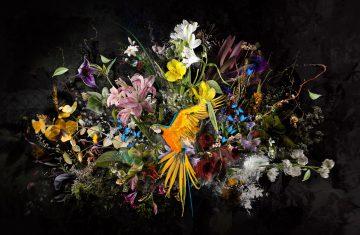 Bouquet XXXVIII
